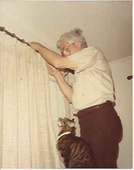 Tiger helping him hang curtains.