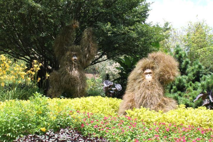 orangutan plant giants